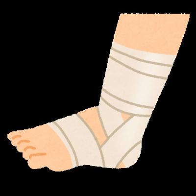 整体からみる足首と消化器の関係